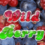 wild berry 5 reels slot machine