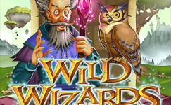 wild wizards online slot rtg