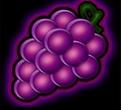 Fancy Fruit kostenlos spielen online trauben symbol