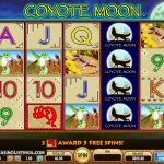 coyote moon automatenspiele