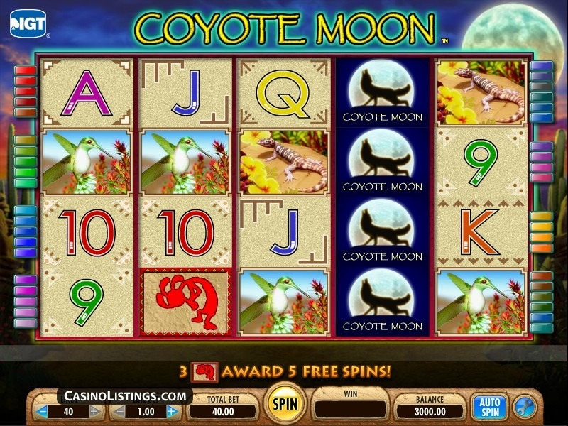 coyote moon automatenspiele