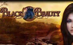 black beauty spielautomat bally wulff online