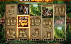 untamed bengal tiger microgaming slot spielen