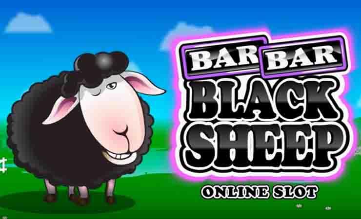 BAR-BAR-Black-Sheep