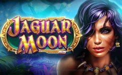 blackjack casino lugano elven princess kostenlos spielen