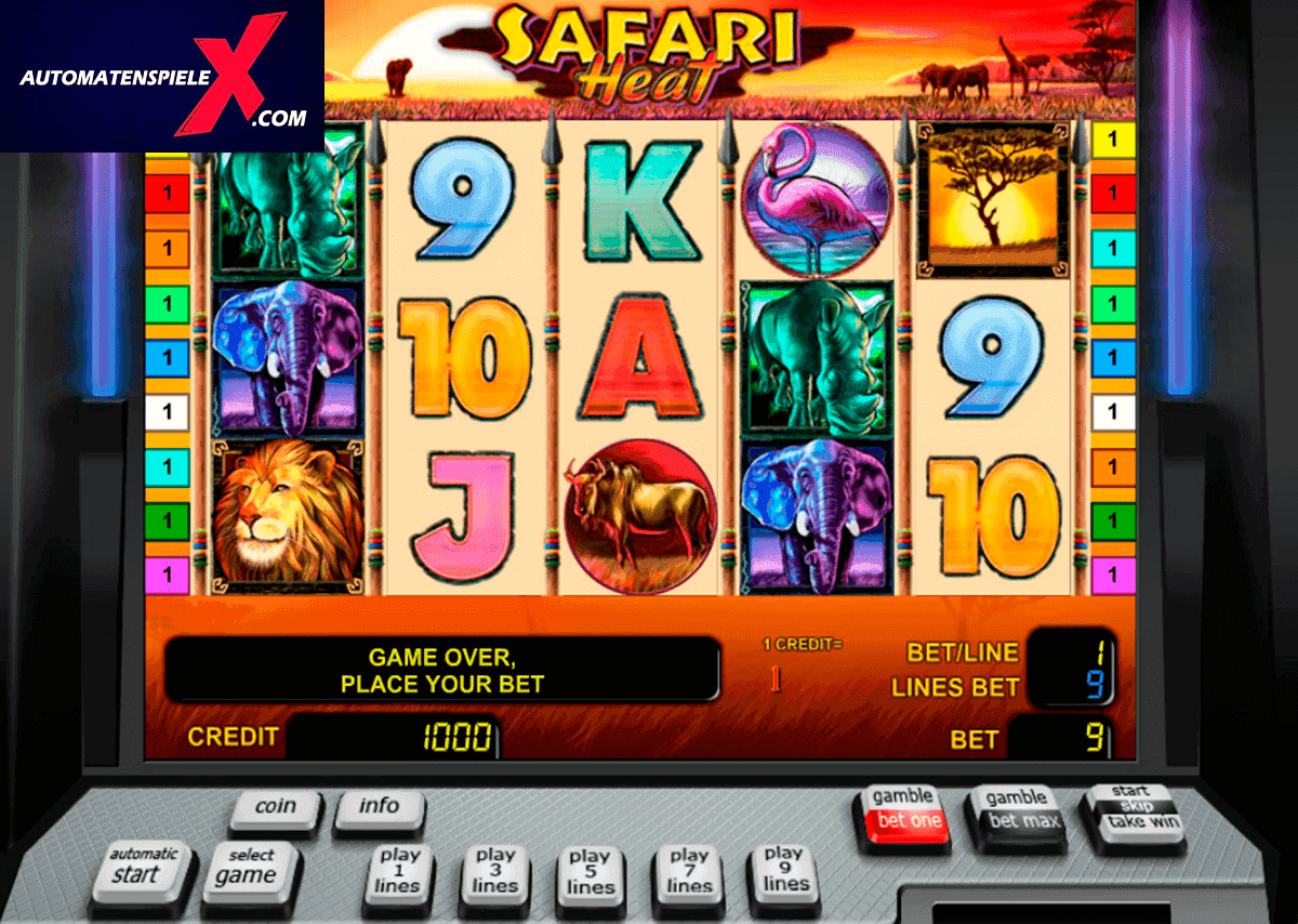 Spielautomat safari kostenlos online